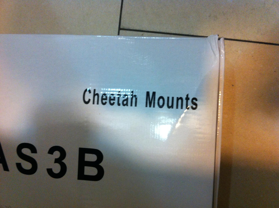 Finally! I can mount my cheetah!